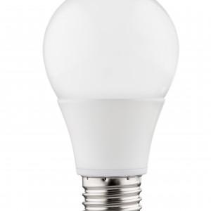 LED Bulb E27 Premium